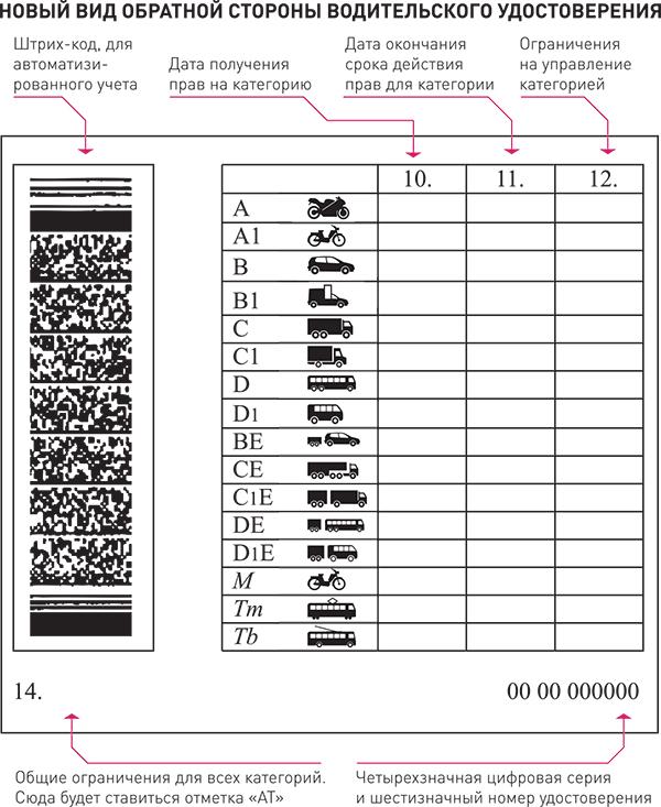 Что такое водительские права категории В1 и В