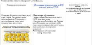 Обследование - схемы, методы, принципы и алгоритмы проведения диагностики ЗНО молочной железы